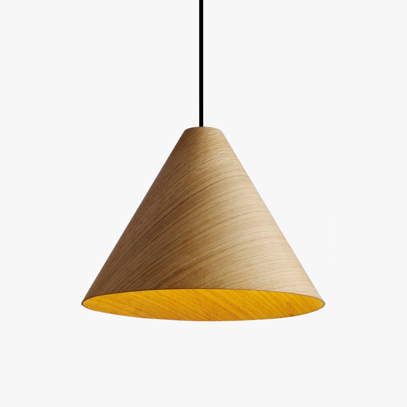 30 degrees pendant lamp with cord set by studio johan van hengel for