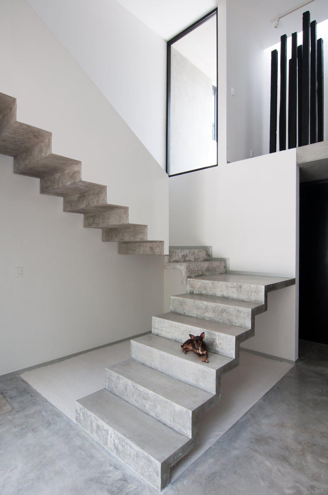 Attirant U Shaped Concrete Staircase Casa Garcias By Warm Architects