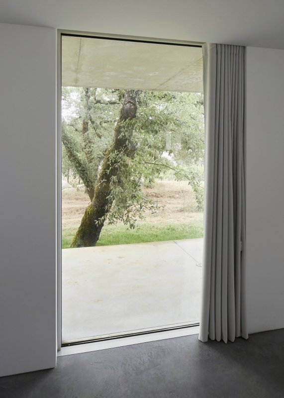 Floor to ceiling window. Fanu House by Bruno Dias Arquitectura