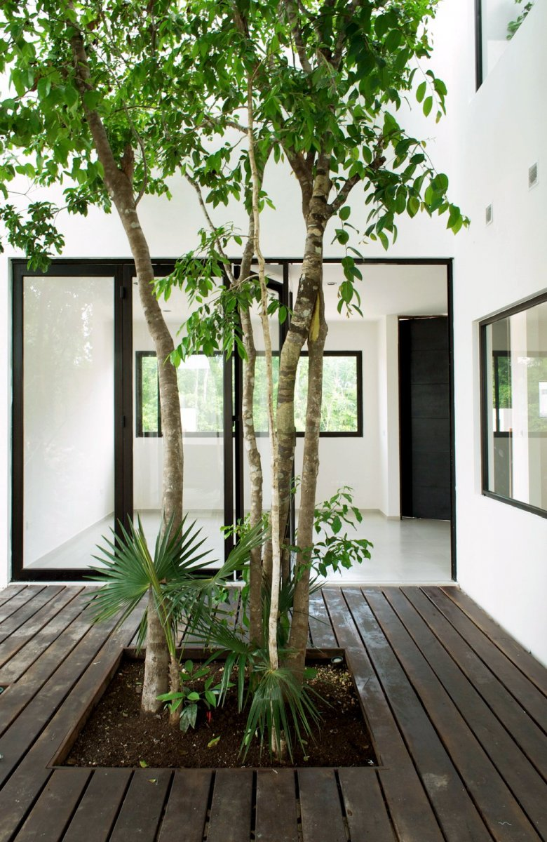 Central tree courtyard. W41 by Warm Architects