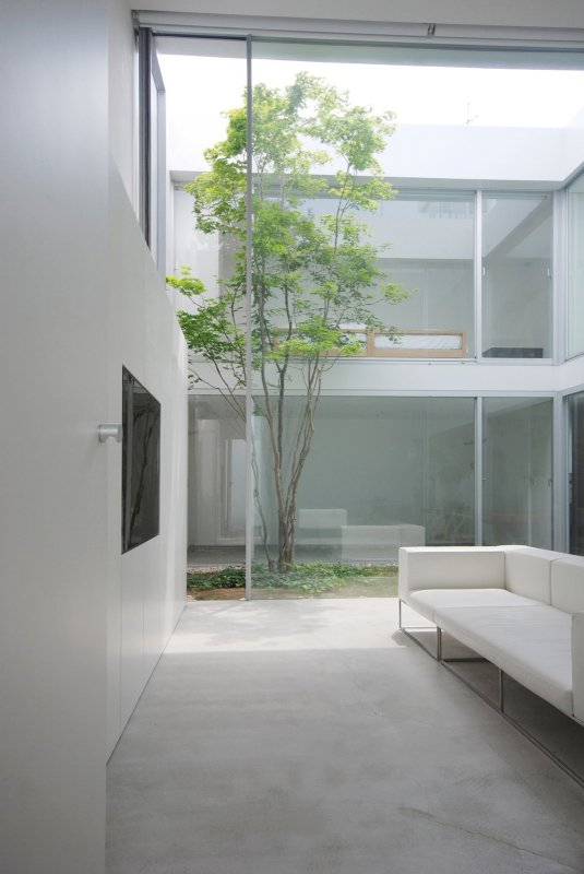 High ceiling living room. S Residence by Shinichi Ogawa & Associates