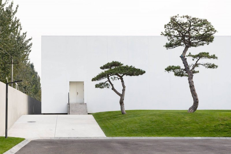 Box-shaped building with pine tree garden. Song Art Museum by Vermilion Zhou Design Group